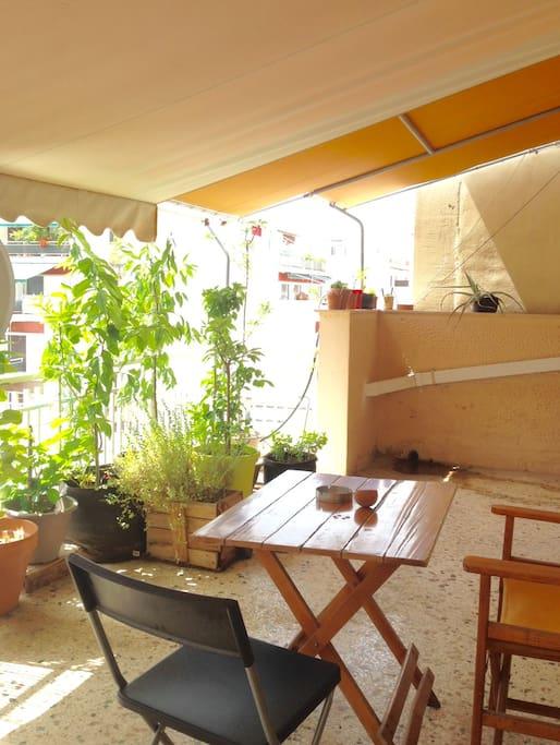 Big Sunny Balcony