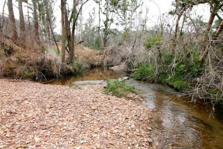 Secluded bush caravan with creek