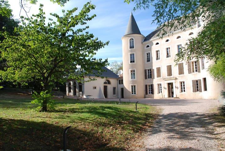 chambre dans l'orangerie du château 30m2 - Salles-sur-l'Hers - Casa
