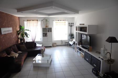 Chambre 12m2 dans appartement 110 m2 avec terrasse - Saint-Étienne