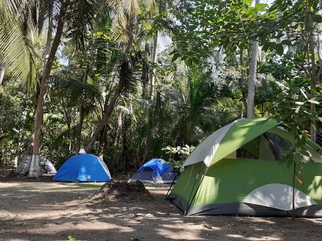 Ecological camping in nature