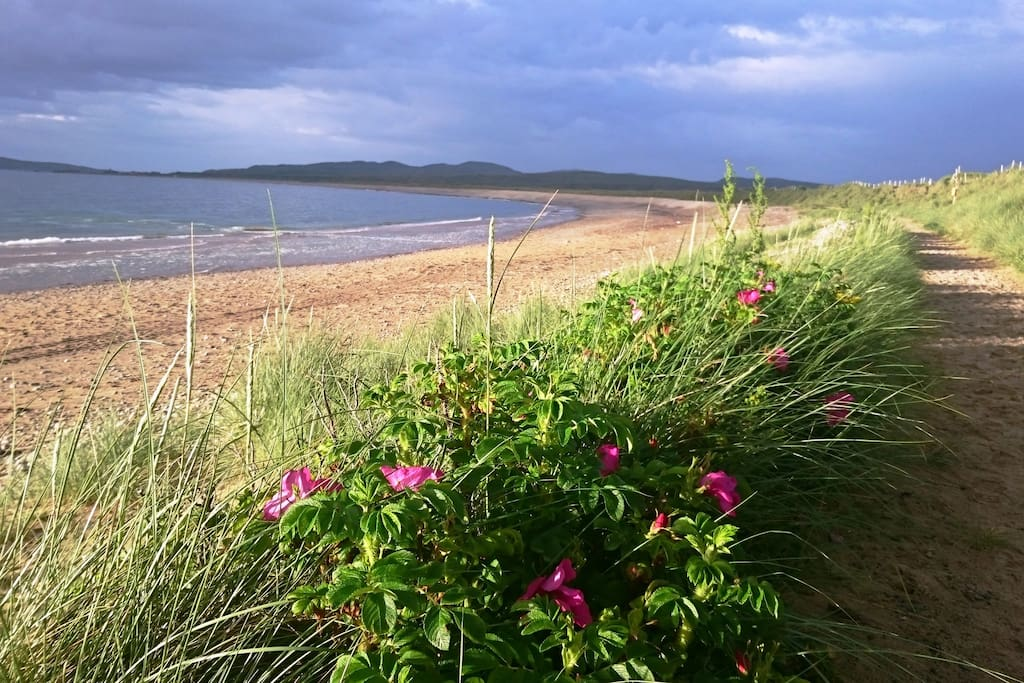 Pollan Beach Walk, Ballyliffin