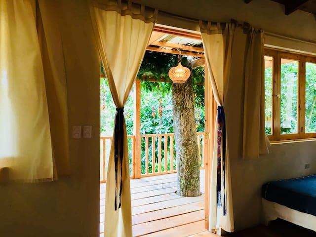 Garden Suite at Isla Verde
