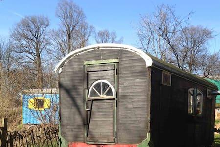 Der alte Mehlwagen - Wenzendorf - Wohnwagen/Wohnmobil