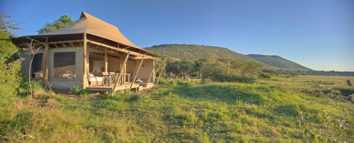 & Kichwa Superior View Tent - Apartments for Rent in Masai Mara Kenya
