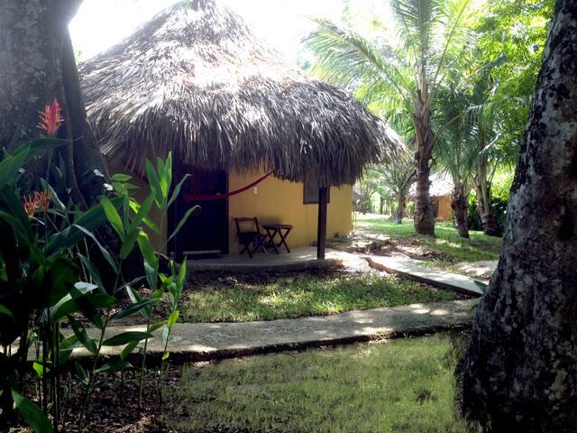 Cabaña en la Selva de Palenque 4p 1 habitación - Palenque