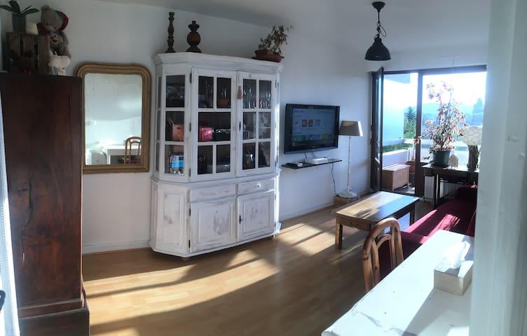 Appartement proche Genève