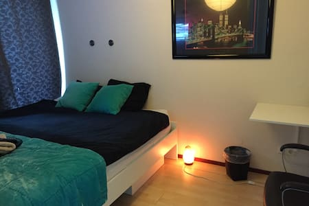 Nice room 15 min from Adam center - Amsterdam - Huoneisto