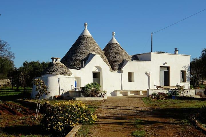 Pretty Trullo Ideally located for many excursions in beautiful Puglia