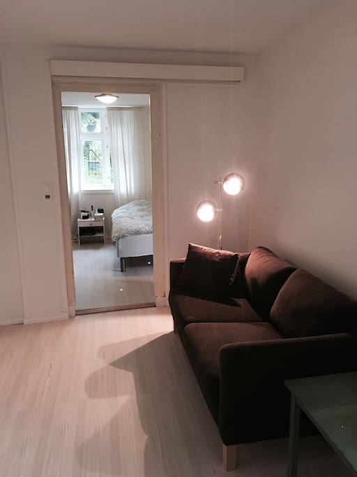 Small living room with sofa. Possibility for extra bed