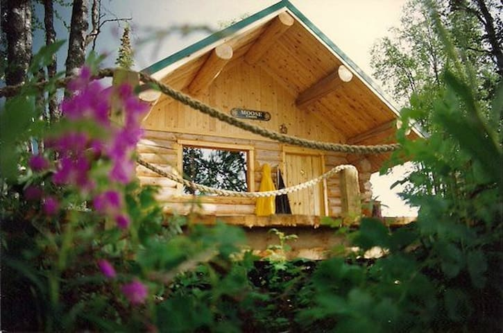 Kenai River Cabin w/ great fishing