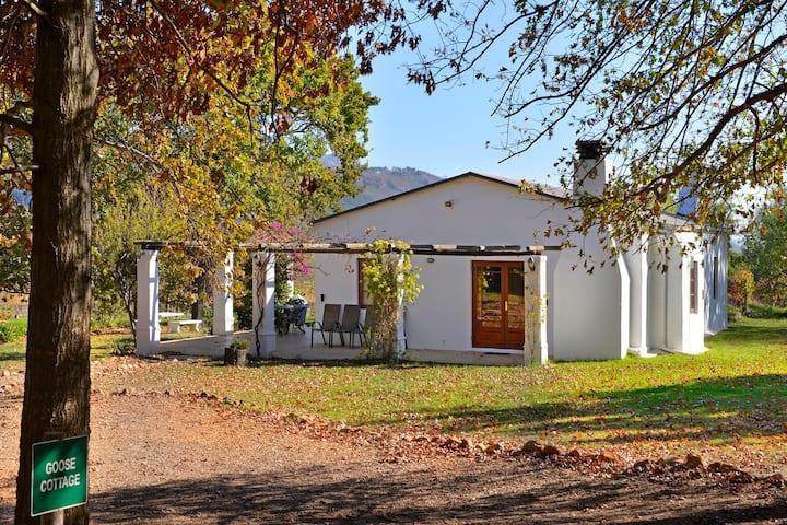 Bo La Motte Farm  - Goose Cottage