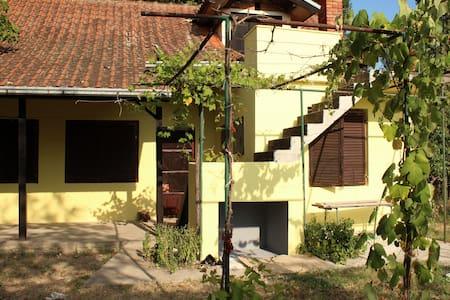 Silver fish house on Danube river - Banatska Stara Palanka,Bela Crkva