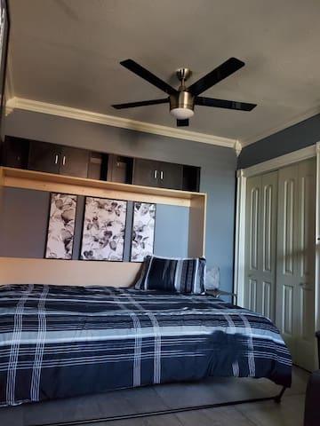 Double door closet, ceiling fan and Murphy bed in living space