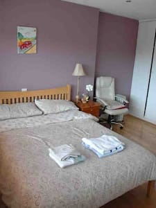 En-suite Double Room & Single Room.Breakfast incl. - Waterford - Wikt i opierunek