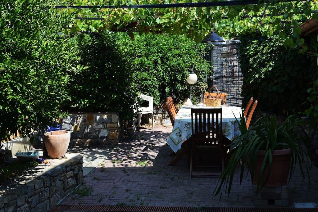 Giardino - Garden