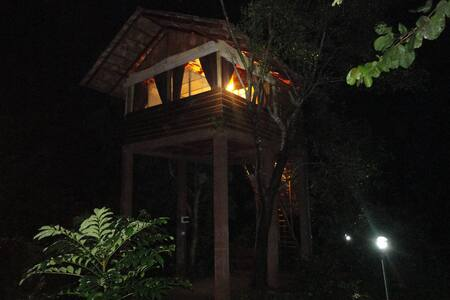 Sigiriya Tree House - Boomhut