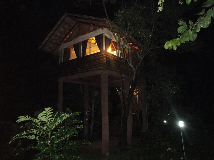 Sigiriya Tree House