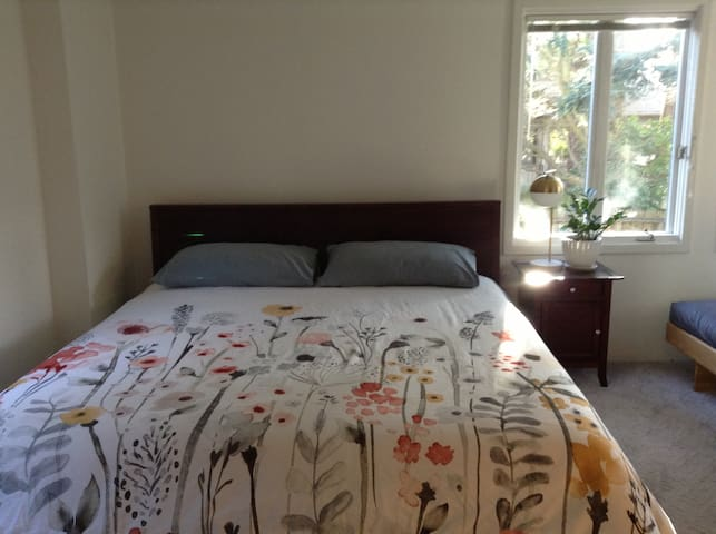 Private room, comfortable king-sized bed, full size futon couch as well