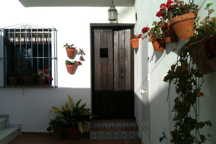 Estudio naranja en patio andaluz - Conil de la Frontera