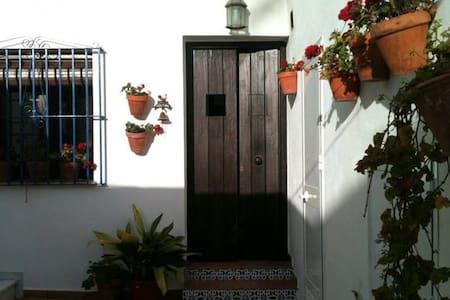 Estudio naranja en patio andaluz - Conil de la Frontera - Byt