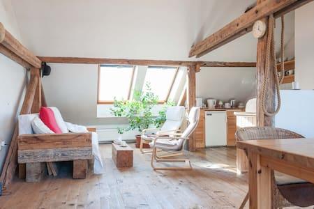 Jan Antonin's loft A - Praha - Loft