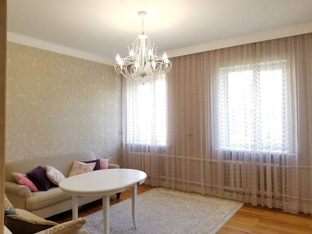 One Bedroom Apartment in Downtown Bishkek