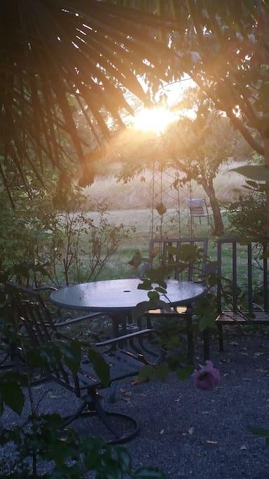lots of restful beautiful garden space