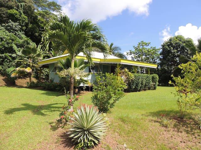 La maison bleue - Papeete - Rumah