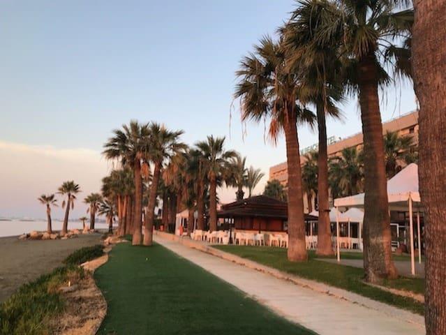 MEDUSA GARDENS 206  - Beach Front - (by costa)