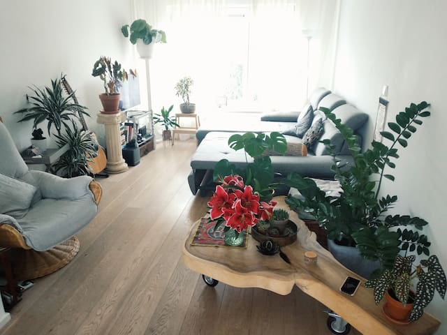 Lovely 80m2 flat / plant hub @nearby central st.