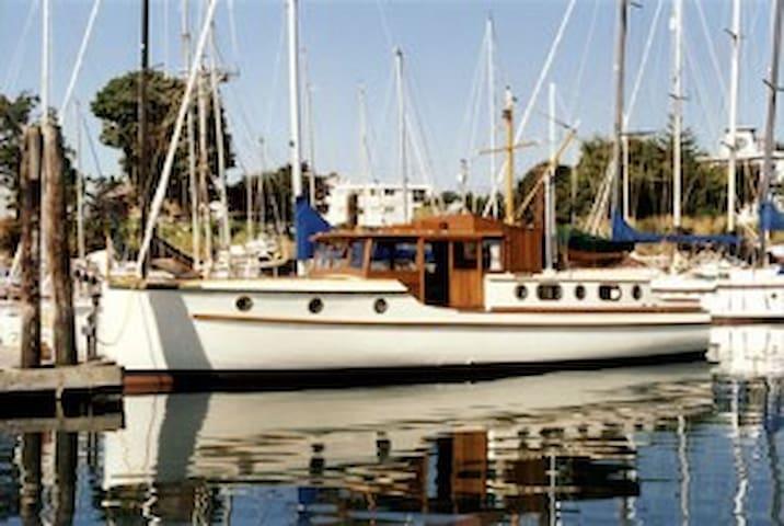 Classic 40ft yacht! Any Gulf Island Moorage! - Sidney - Barco