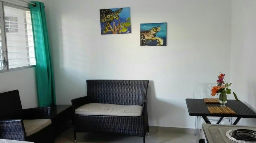 Bello y acogedor apartamento - Roatán - Apartemen