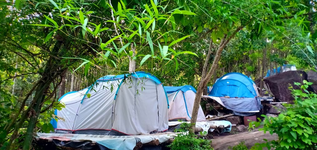 Tent stay Hill top