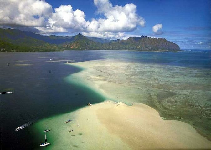 Kayak, snorkel, fish, and explore the sand bar of Kaneohe bay just a five minute drive away.