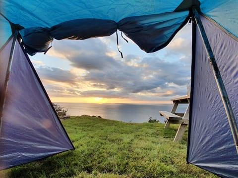 Quiet remote wildish camping,  stunning sea views!