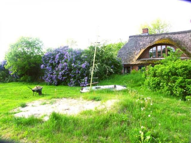 Typisch nordfriesisches Reetdachhaus mit Badesee - Blick auf die Schafsweide