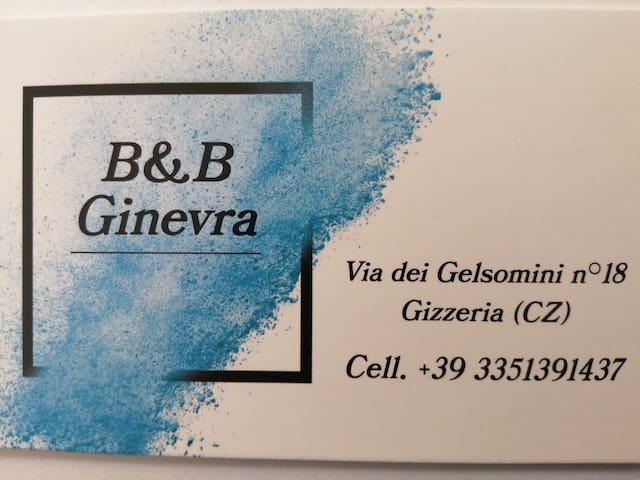 B&B GINEVRA patr. IVA