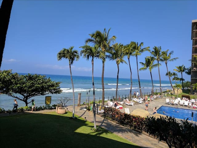 Maui Westside Properties: Kaanapali Shores 259 - Kaanapali - Appartement