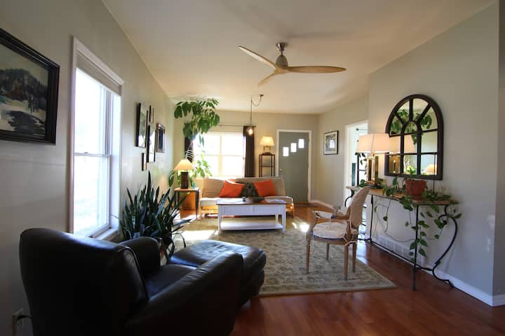 Bright Open Space, Clean & Comfortable