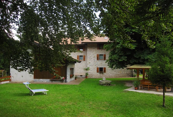 Villa Paradiso Parolari - The house in the woods