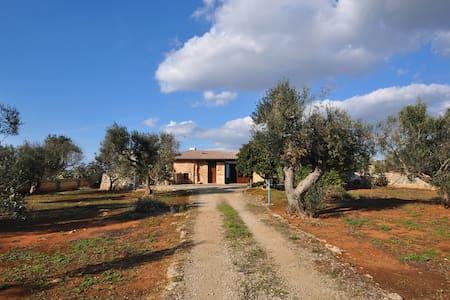 """Trullo """"Li Pacci"""" in Villa con uliveto - Racale"""