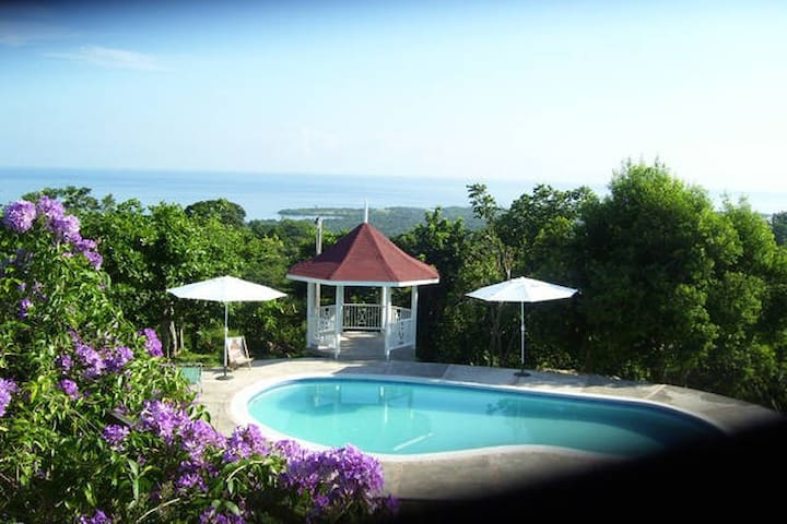 Beautiful Panoramic Caribbean Sea Views with Pool - St. Ann's Bay - Apartament