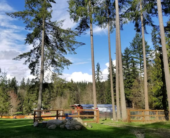 1 Bedroom - Woodinville, WA., USA - Woodinville - In-law