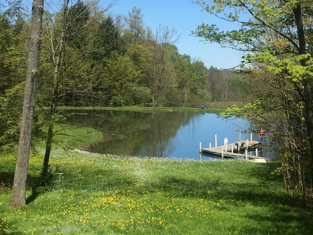 Comfy cabin on echo pond sherman chautauqua ny cabins for Fishing cabin rentals