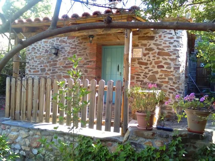 El Olivo Cabaña ,piscina  clientes,Jardin privado
