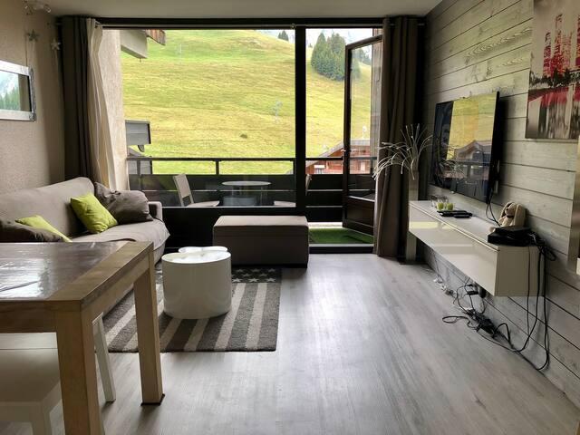 Magnifique appartement au pied des pistes de ski
