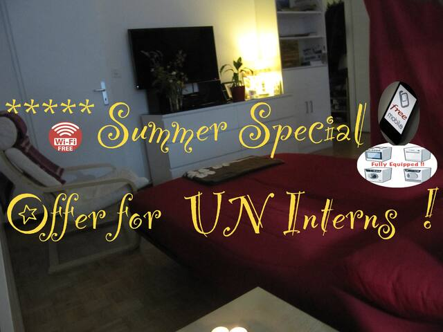 Perfect for UN Intern !