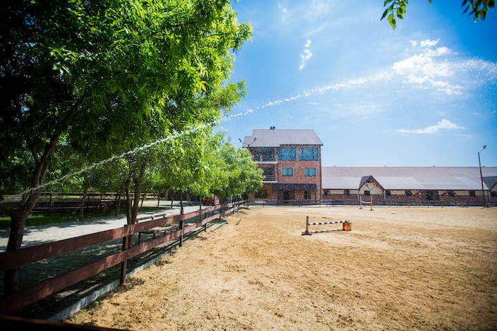 Cozy home for horse riding lovers near Tbilisi