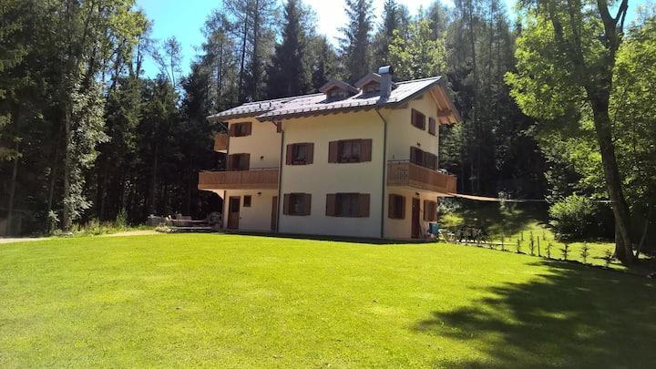 Casa vacanze Pieve di Cadore-30 km da Cortina